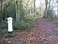 Ashtead Common, Coal Tax Post - geograph.org.uk - 1054410.jpg