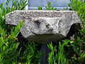 Assen - stenen vogel van Herman Nieweg 01.jpg