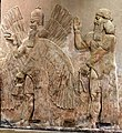 Assyrian human-headed protective spirit from Khorsabad, Iraq. The Iraq Museum.jpg