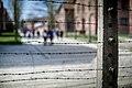 Auschwitz - panoramio (37).jpg