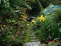Autumn garden - Flickr - peganum (2).jpg