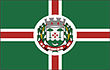 Vlag van Salvador do Sul