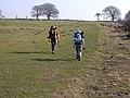 Backpackers on Hadrian's Wall National Trail - geograph.org.uk - 1210831.jpg