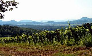 Balaton wine region wine region of Hungary