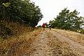 Baltar, Province of Ourense, Spain - panoramio (75).jpg
