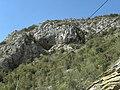 Banat, St.Helena - panoramio (38).jpg