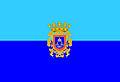 Bandera de San Javier.jpg