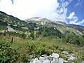 Bansko, Bulgaria - panoramio (54).jpg
