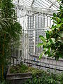 Barbican Conservatory on 7 Aug 2014 04.jpg