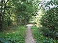 Barbora (rybník), přepad IV.jpg