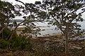 Batehaven NSW 2536, Australia - panoramio (3).jpg