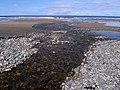 Beach at Kilrusheighter - geograph.org.uk - 1852300.jpg