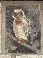 Belgrade zoo mosaic0018.JPG