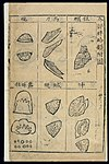 Bencao Gangmu -- C.16 Chinese materia medica, Shellfish Wellcome L0039332.jpg