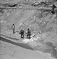 Bevloeiingswerken bij de kibboets Hakuk bij het Meer van Tiberias Arbeiders bez, Bestanddeelnr 255-4793.jpg