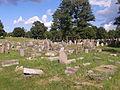 Bialystok cmentarz-zydowski wschodnia.jpg