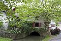 Bidart-Moulin de Bassilour-Bief de l'émissaire-20120710.jpg