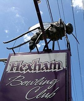 Big Mosquito Hexham