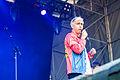 Bilderbuch, Kosmonaut Festival 2014 15.jpg