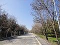 Bilkent University - panoramio.jpg