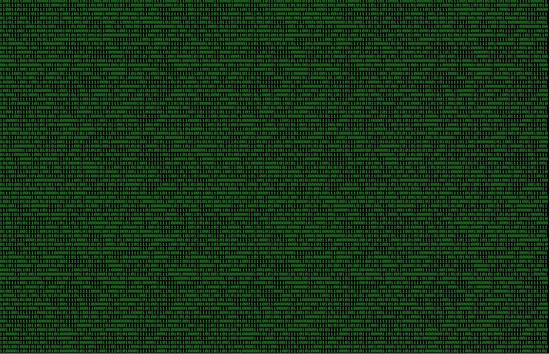 how to use binary in c