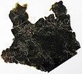 Biotite mica 1 (32075636786).jpg