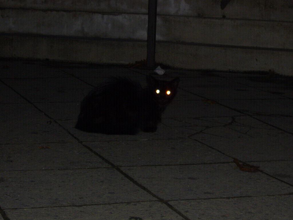 Original Cats Eye Stone