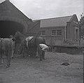 Blacksmith working at the Eccleston village smithy.jpg