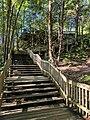 Blackwater Falls State Park WV 35.jpg