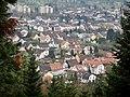 Blick vom Schwarzwald-Schwäbische-Alb-Allgäu-Weg (HW 5) auf Würm beim Hornkopf-Pavillon - panoramio.jpg