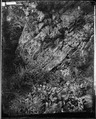Bluff, 1200 ft. high, Lookout Mountain, Tenn - NARA - 529007.tif