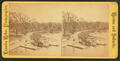 Boat launch at the Public Garden, by Leander Baker.png