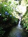 Bodnant Gardens stream - geograph.org.uk - 518938.jpg