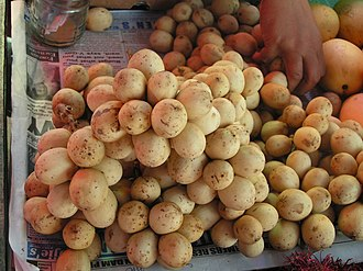 Camiguin - Lanzones, the fruit celebrated By The Whole Island every Third Week Of October in Mambajao