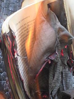 Book burning (2)
