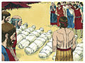 Book of Numbers Chapter 14-3 (Bible Illustrations by Sweet Media).jpg