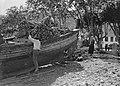 Boot met hout in Santa Cruz op Madeira, Bestanddeelnr 190-0150.jpg