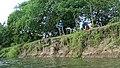 Bootsfahrt am Rio Magdalena 55.jpg