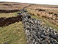 Boundary Wall - geograph.org.uk - 398776.jpg