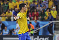 Brazil and Croatia match at the FIFA World Cup 2014-06-12 (42).jpg