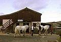 Bre-Pen farm shop and tea rooms. - geograph.org.uk - 287822.jpg