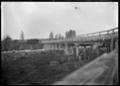 Bridge over the Otara River, near Opotiki, circa 1928. ATLIB 291207.png