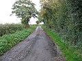 Bridleway Or Road^ - geograph.org.uk - 264601.jpg