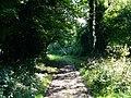 Bridleway to Ashford Hanger - geograph.org.uk - 955553.jpg