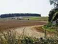 Bridleway up to Launceston Down from the A354 - geograph.org.uk - 1450321.jpg