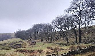 Broadclough - Photograph looking south at the main stretch of Broadclough Dykes.