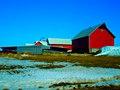 Bruenig Dairy Farm - panoramio.jpg