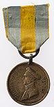 Brunswick Waterloo Medal.jpg