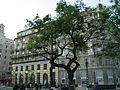 Budapešť 1265.jpg
