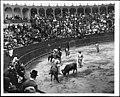 Bullfight in Mexico City, ca.1905 (CHS-2080).jpg